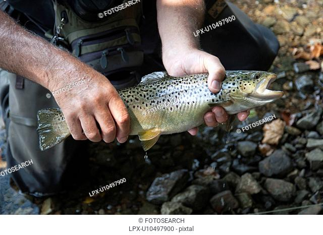 Fisherman with his catch at Lake Taneycomo in Branson, Missouri