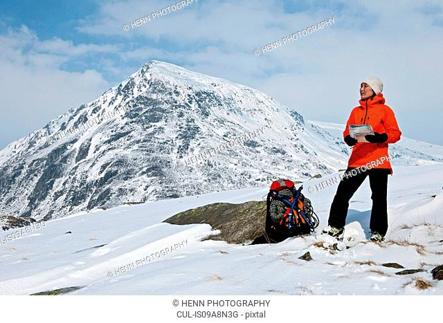 Female climber with map on snow covered mountain, Carneddau, Snowdonia