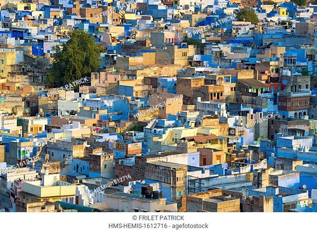 India, Rajasthan state, Jodhpur, the blue city