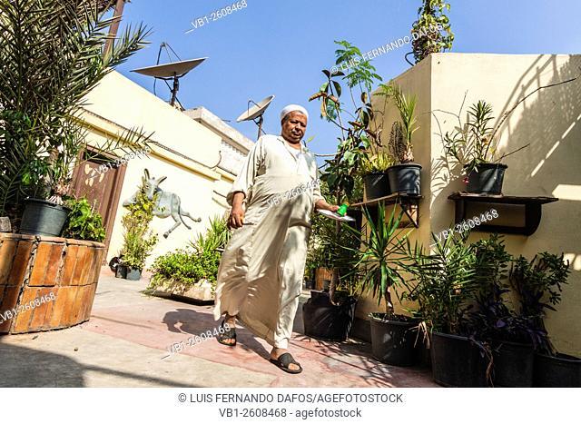 Waiter at Dahab rooftop hostel in El Cairo, Egypt