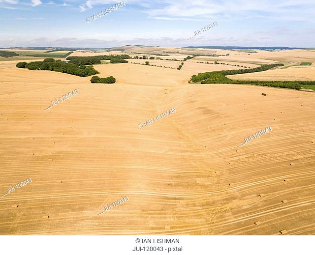 Aerial landscape of harvested summer farm wheat and barley fields