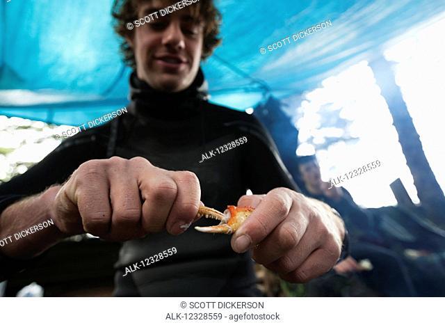 Man eating crab under a tent, Southeast Alaska; Yakutat, Alaska, United States of America