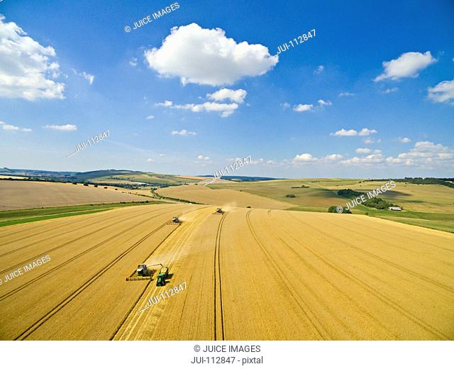 Scenic aerial landscape view of combine harvester filling tractor trailer in sunny golden barley field in rural countryside