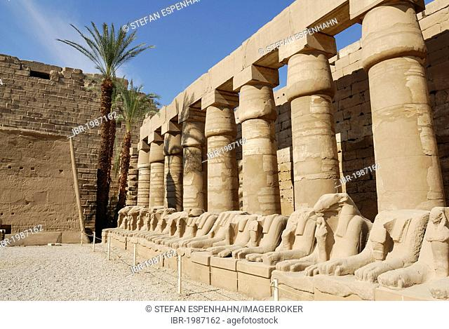 Aries statues, Temple of Amun-Re, Karnak Temple, Luxor, Nile Valley, Egypt, Africa