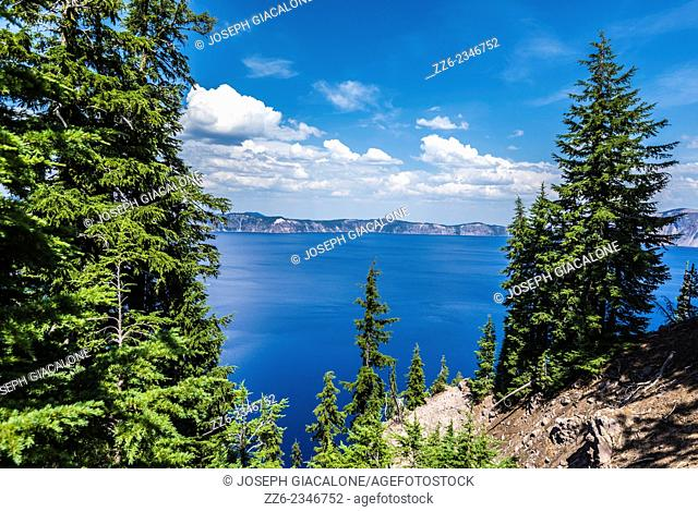 Crater Lake framed by pine trees. Crater Lake National Park, Oregon, United States
