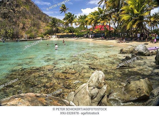 Strand Plage du Pain de sucre, Insel Terre-de-Haut, Les Saintes, Guadeloupe, Karibik, Frankreich   Plage du Pain de sucre beach, Terre-de-Haut, Les Saintes