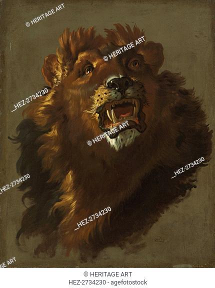 Lion, 1750s. Creator: Giuseppe Baldrighi (Italian, 1723-1803)