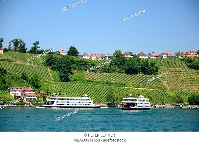 Germany, Baden-Wurttemberg, Lake of Constance, Meersburg, viticulture
