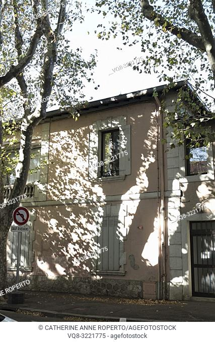 Vertical close up composition of plane trees casting dramatic shadows and reflections on a traditional pink and white shuttered house with a residents only road...