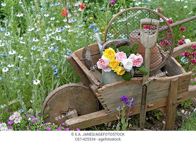 Victorian flower garden. Still life