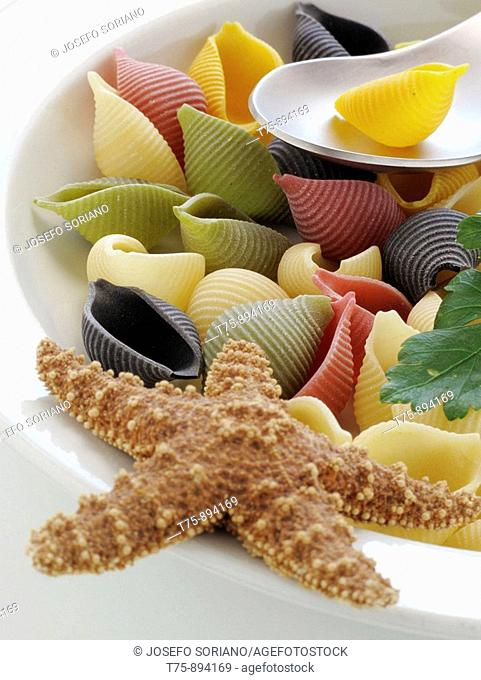 Sicilian pasta shells