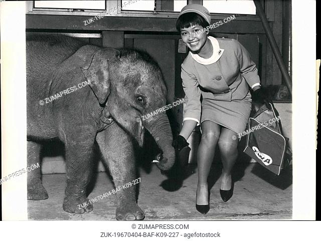 Apr. 04, 1967 - Miss Thai Makes A Stop In Paris: 'Miss Thai' a female baby elephant hailing from Thailand stopped in Paris in her way to the Amsterdam Zoo