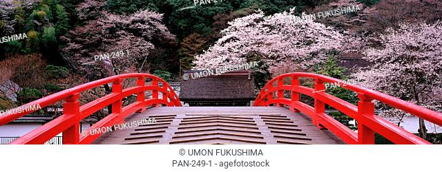 Bridge, Murouji Temple, Murou Village, Nara, Japan
