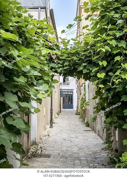 Impasse Poule, rue des Vignoles, Paris 75020