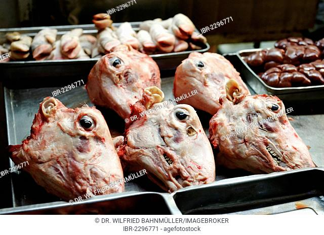 Sheep's heads, meat department, butcher's at the bazaar, souk, Jerusalem, Israel, Middle East