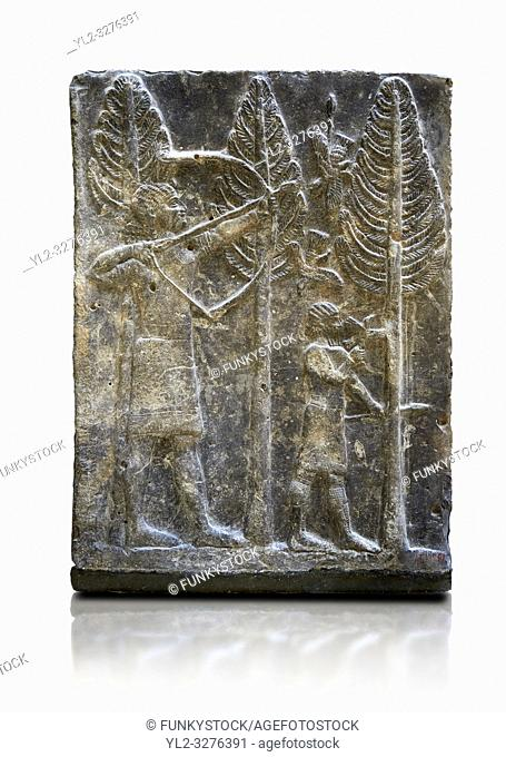 Stone relief sculptured panel of a a bird hunt. Inv AO 19886 from Dur Sharrukin the palace of Assyrian king Sargon II at Khorsabad, 713-706 BC