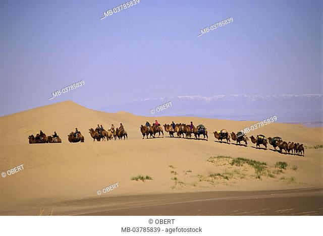 Central Asia, desert Gobi, caravan   Mongolia, Asia, sand, dunes, traveling dunes, camel herd, camel train, camels, people, Mongolians, camel nomads, nomads