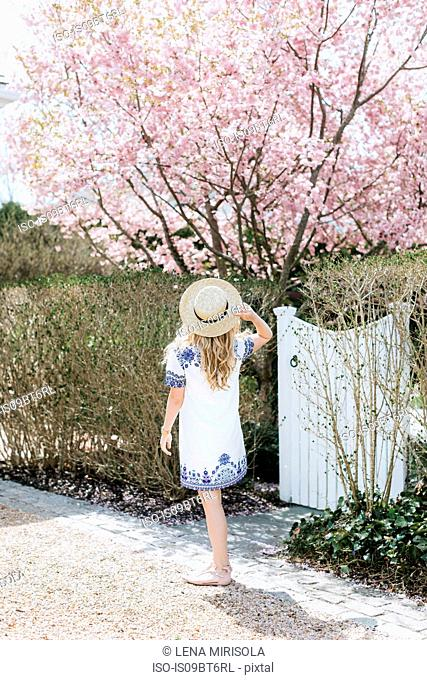 Young woman in straw boater in front of pink tree blossom, rear view, Menemsha, Martha's Vineyard, Massachusetts, USA