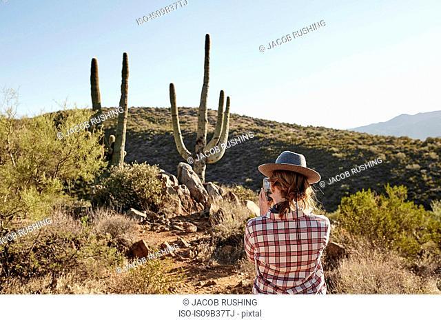 Woman photographing cacti, rear view, Sedona, Arizona, USA