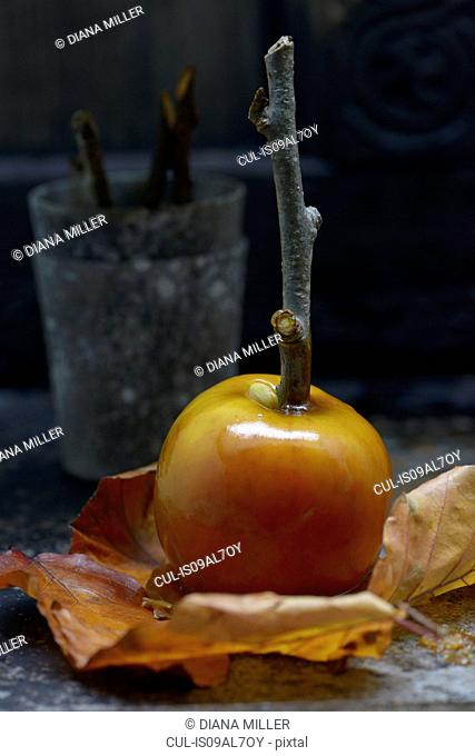 Freshly made toffee apple, close-up