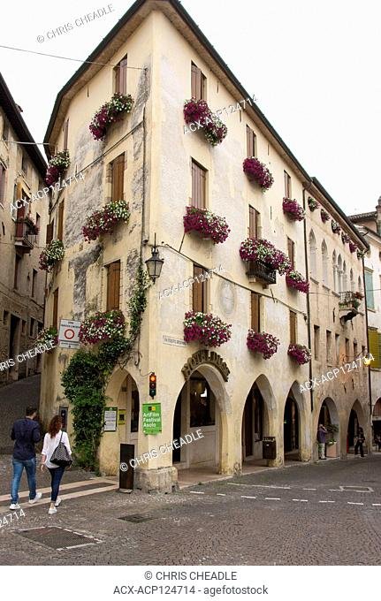 Window planyers with blooming petunias, Asolo, Italy