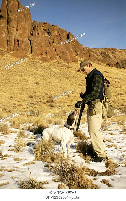 Upland Bird Hunter With Dog