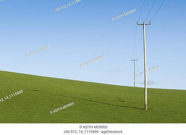 Electricity poles carrying power line across empty field UK