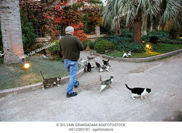 France,Roussillon,Pyrenees-Orientales, Molitg-les-Bains, thermal hotel, time for the 57 cats dinner