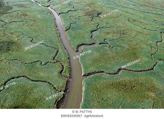 aerial view to Verdronken land van Saeftinghe, Netherlands, Zeeuws-Vlaanderen, Verdronken land van Saeftinghe