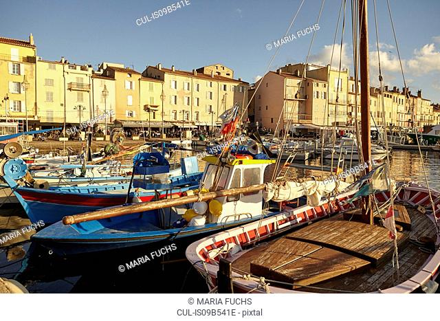 View of traditional boats and harbour, St Tropez, Cote d'Azur, France