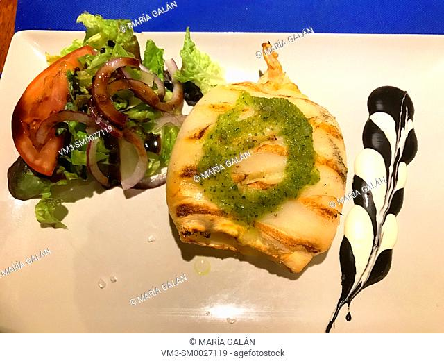 Grilled cuttlefish with salad and alioli sauce. Spain
