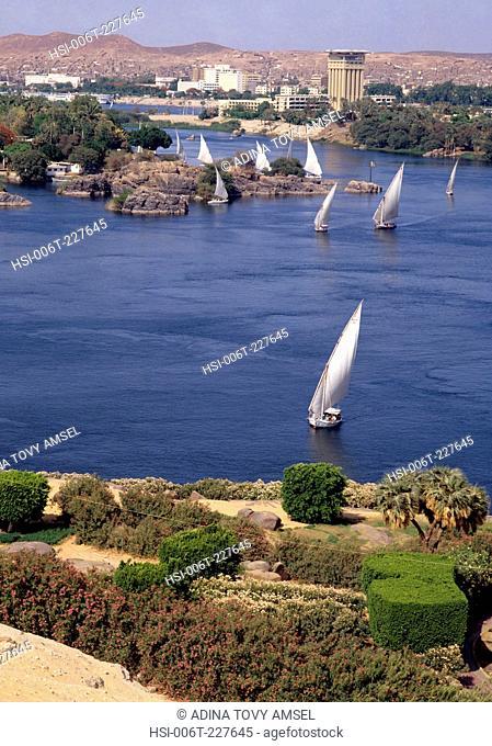 Egypt. Cairo. Nile river. Feluccahs