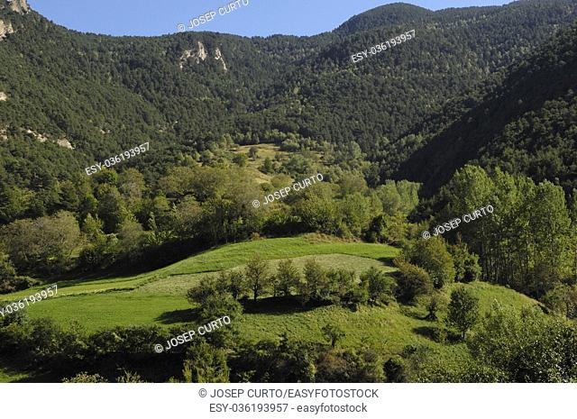 Natural Park of the High Pyrenees, Arestui, Pallars Sobira, Lleida province,Catalonia,, Spain