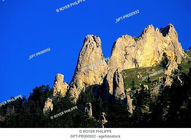 ROCK IN LA COLMIANE, MERCANTOUR NATIONAL PARK, (06) ALPES MARITIMES, PACA, FRANCE