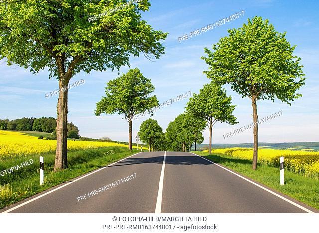Bundesstrasse 3 between Dransfeld and Wellersen, Göttingen district, Lower Saxony, Germany, spring 2017 / Bundesstraße 3 zwischen Dransfeld und Wellersen