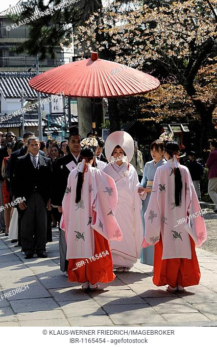 Wedding in traditional kimonos, hair covered, Shinto wedding in the Yasaka Shrine, Maruyama Park, Kyoto, Japan, Asia