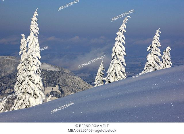 Germany, Bavaria, Upper Bavaria, Isarwinkel, Brauneck, winter scenery