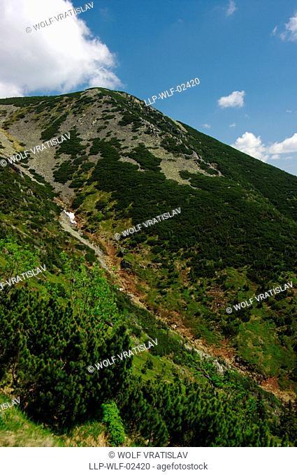Landscape around Kozi hrbety ridge, Krkonose National Park, Giant Mountains, Liberec Region, Czech Republic