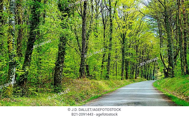 Landscape near Maurs, Cantal, Auvergne, France