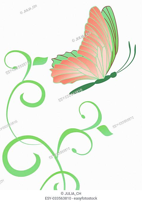 abstract butterfly and flourishes isolated on white