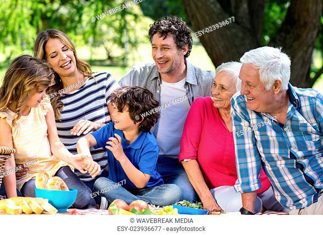 Smiling family having a picnic