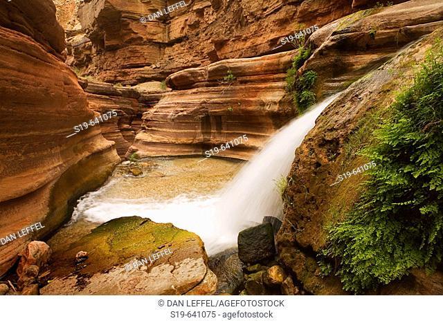 United States, US, Arizona, Grand Canyon National Park, Colorado River, Deer Creek