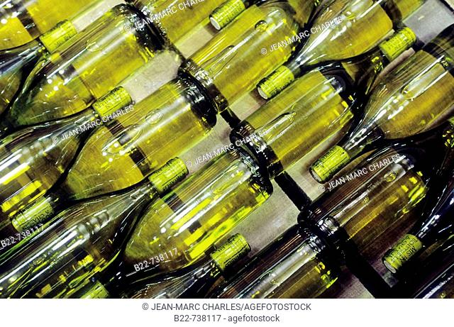 Chablis is one of the most famous white wine coming from Burgundy, France