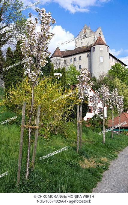 Burg Meersburg, Old Castle, Meersburg, Lake Constance, Baden-Wuerttemberg, Germany, Europe