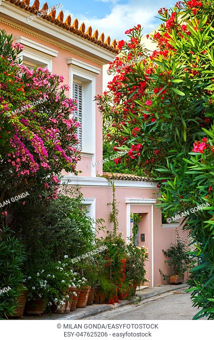 Street with a lot of flowers in Plaka neighbourhood of Athens, Greece.
