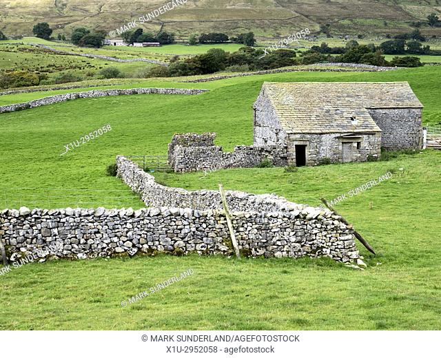 Field Barn and Dry Stone Walls below Whernside Ribbelsdale Yorkshire Dales England