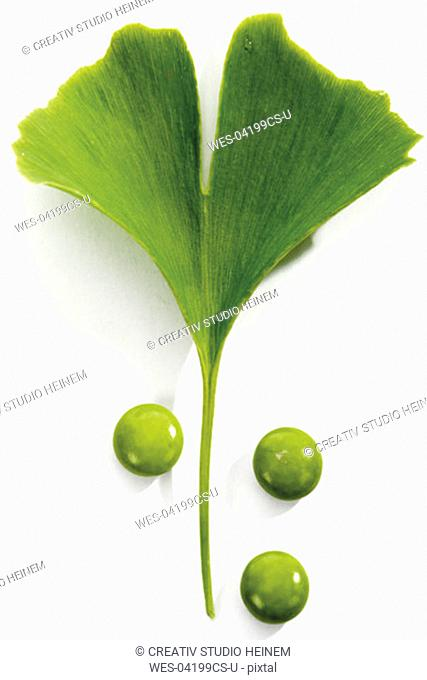 Ginkgo leaves and pills, close-up
