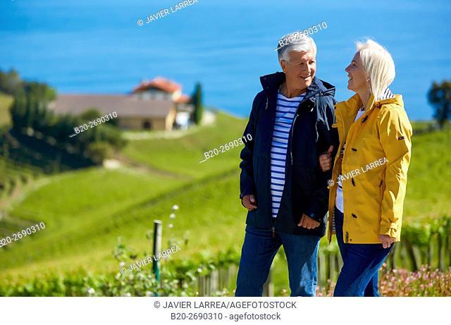 Senior couple, 60-70, Walking among txakoli vineyards, Getaria, Gipuzkoa, Basque Country, Spain, Europe