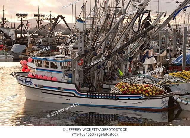 Pacific herring Clupea pallasii sac roe fishing fleet congregating in Sitka, Alaska's harbors in preparation for the fishery opening