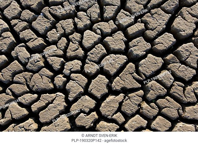Abstract pattern of dry cracked clay mud in dried up lake bed / riverbed caused by prolonged drought in summer in hot weather temperatures
